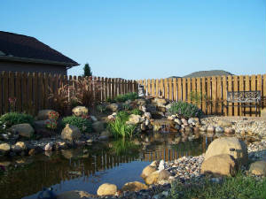 Our_Pond_Project_158.jpg