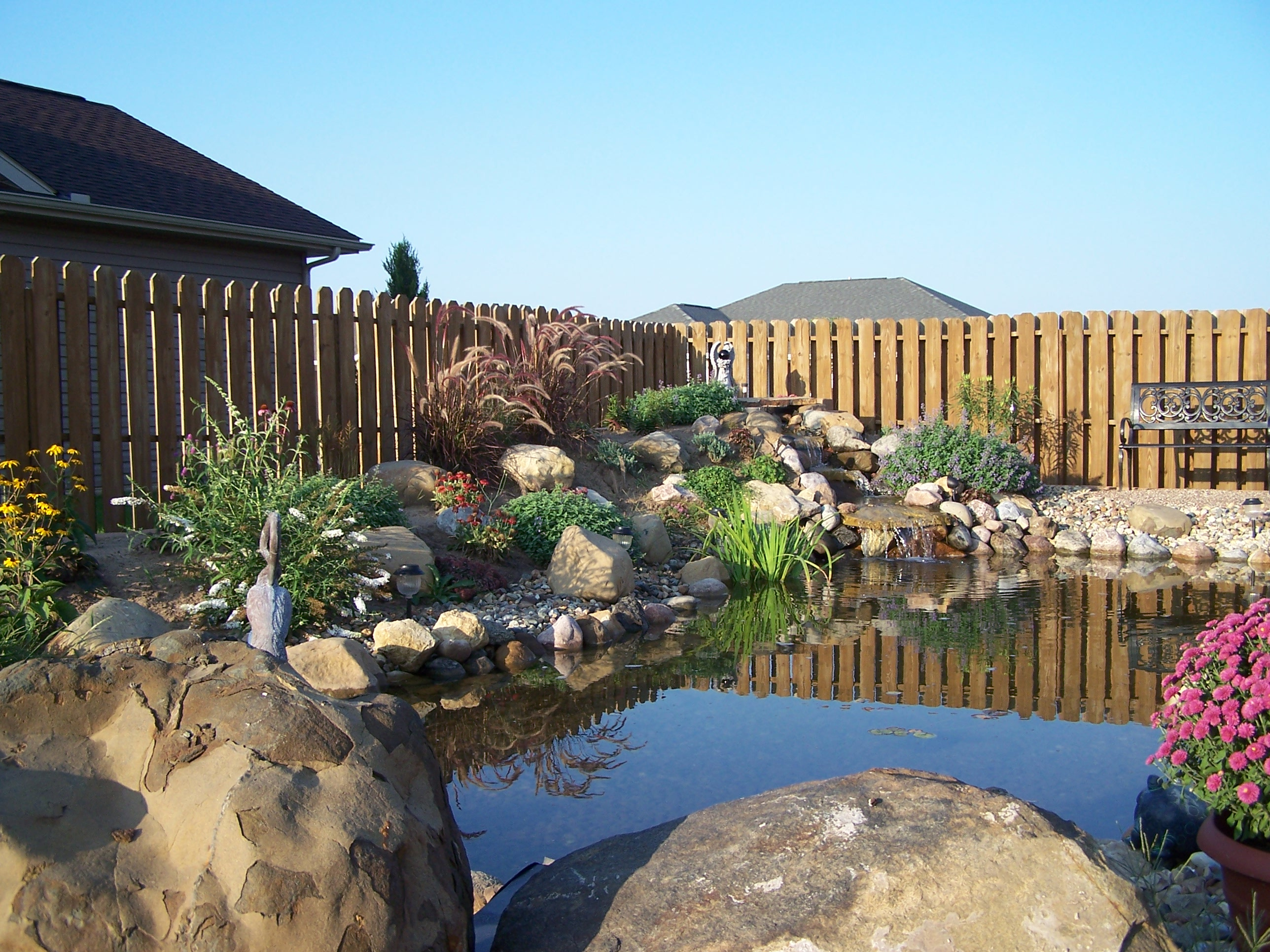 Our_Pond_Project_161.jpg